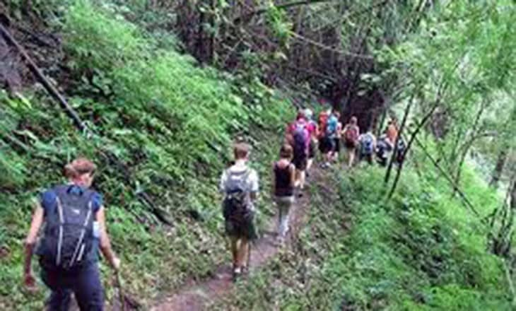 Trek to Langbiang Mountain