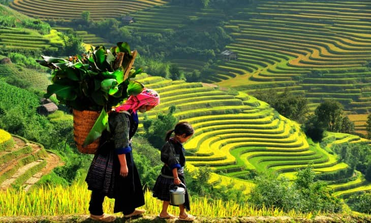 SAPA EASY TREK 2D 3N