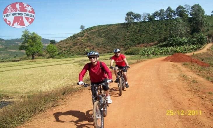 Paradise biking