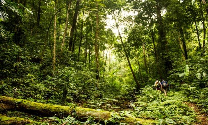 2 Days trek in Bidoup National park