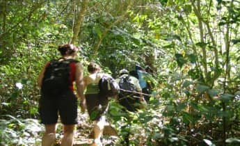 2 Days trek in Bidoup National park