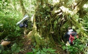 2Days - Cat Tien National Park Trek